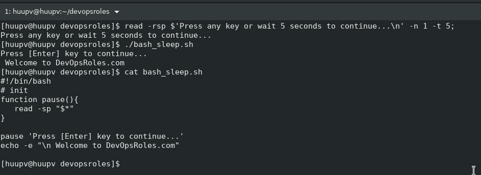 Bash sleep