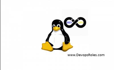 Linux DevopsRoles.com