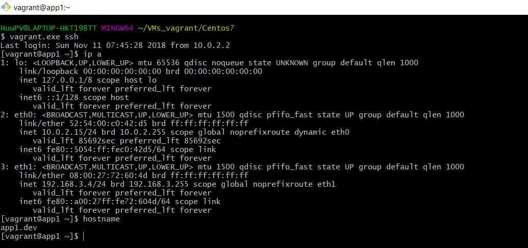 Vagrant connect VMs
