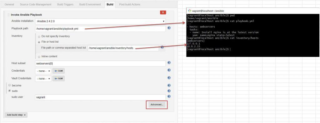 Jenkins install Plug-in Ansible - DevopsRoles com